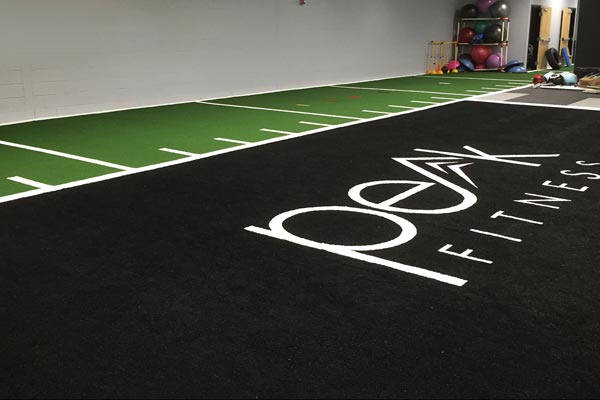 artificial grass agility and track