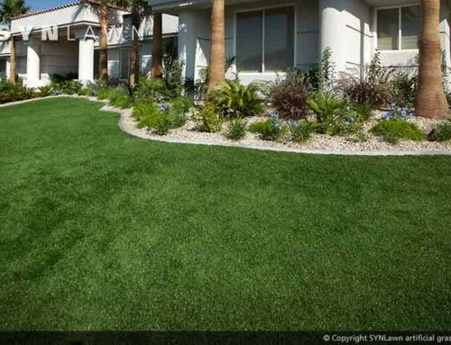 Enjoy the Fall Festivities with an Artificial Grass Lawn From SYNLawn New Mexico